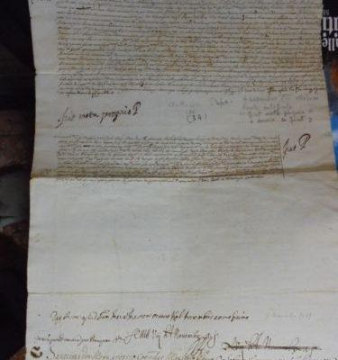 Pope Alexander VIII: A Letter Signed by Him on November 8, 1689